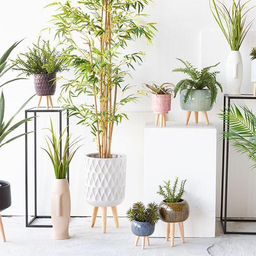 Accessories - Plant Pots